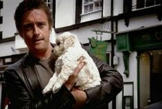 Richard Hammond brings home his new labradoodle I Have A Crush, Having A Crush, Top Gear Funny, Stephen Gately, Top Gear Bbc, Clarkson Hammond May, Lucky Puppy, Jeremy Clarkson, Grand Tour