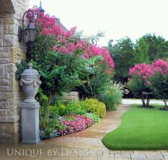 Pretty use of Crepe Myrtles
