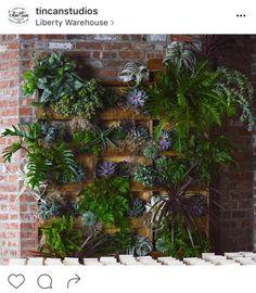 19-perfis-do-instagram-que-amam-flores-plantas-para-voce-seguir