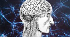 Dr. Lee Cowden, founder of the Academy of Comprehensive Integrative Medicine, discusses some really simple and inexpensive strategies that boost brain health and support neuroregeneration. https://articles.mercola.com/sites/articles/archive/2018/06/10/how-to-boost-brain-health-support-neuroregeneration.aspx