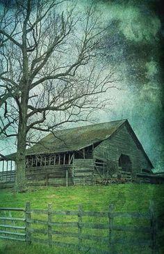 Old barn, tree, fence