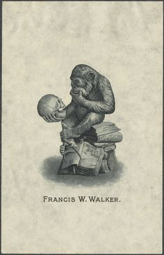 """""""Chimpanzee, holding in one foot a caliper, sits on a pile of books contemplating a human skull;. On one book spine: 'Darwin'; on an open book: 'Eritis sicut deus' (You will be as a god)"""""""