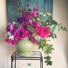 Plums, Bougainvillea and garden roses by Kiana Underwood/Tulipina