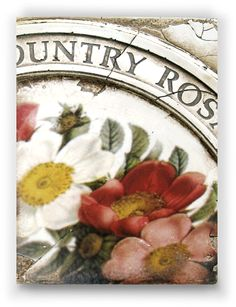 Sid Dickens-Country Roses-Retired