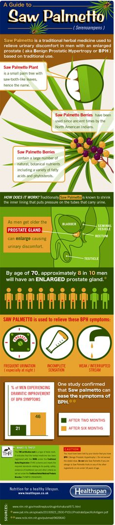 Saw Palmetto - The benefits of saw palmetto against enlarged prostate - infographic - Healthspan Alternative Health, Alternative Medicine, Herbal Remedies, Natural Remedies, Survival Blog, Healing Herbs, Nutritional Supplements, Health Facts, Herbal Medicine