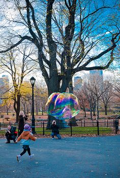 Central Park Fall Colors, NYC ~ Bubbles