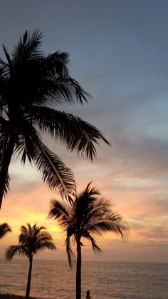 iphone wallpaper sunset New Wallpaper Iphone Beach Quotes Posts Ideas Tree Wallpaper Pink, New Wallpaper Iphone, Homescreen Wallpaper, Sunset Wallpaper, Iphone Background Wallpaper, Aesthetic Iphone Wallpaper, Nature Wallpaper, Aesthetic Backgrounds, Aesthetic Wallpapers