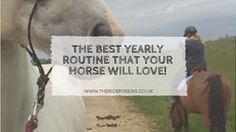 The Best Yearly Routine That Your Horse Will Love!