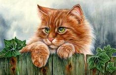 Кот в шиповнике Усталый кот в малиннике Кот в глухом уголке сада Еще один спящий кот. Кот на подоконнике Кот на заборе Кот с диким виноградом Кот и листопад Кот на…