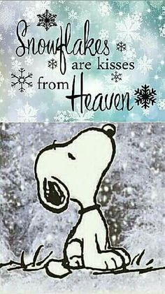 Snoopy - Snowflakes are kisses from heaven Snoopy Love, Charlie Brown And Snoopy, Snoopy And Woodstock, Charlie Brown Quotes, Peanuts Quotes, Snoopy Quotes, Phrase Cute, Cute Quotes, Funny Quotes