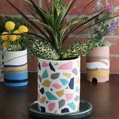 Painted Plant Pots, Painted Flower Pots, Mosaic Flower Pots, Decorated Flower Pots, Ceramic Plant Pots, Polymer Clay Crafts, Diy Clay, Diy Planters, Clay Planter