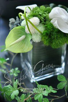 Gallery | UNITED BOUQUET Modern Flower Arrangements, Table Arrangements, Green Garden, Flower Centerpieces, Tropical Flowers, Flower Art, Bouquets, Floral Design, Shabby Chic