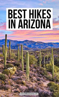 Best Hikes In Arizona Usa Roadtrip, Travel Usa, Travel Tips, Solo Travel, Places To Travel, Travel Destinations, Places To Visit, Hiking Places, Tahiti