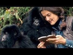 Die letzten Tage einer Legende - Dian Fossey - Doku/Dokumentation