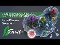 Envita is a leading cancer, Lyme disease, and chronic disease Unipathic treatment center in Scottsdale, Arizona. Best Hair Vitamins, Rat Race, Lyme Disease, Marriage Life, Cancer Treatment, Autoimmune, Fibromyalgia, Factors, Allergies