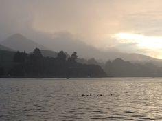 NZ views - Otago peninsula