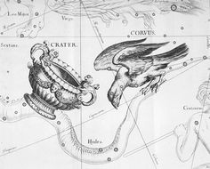 Corvus and Crater