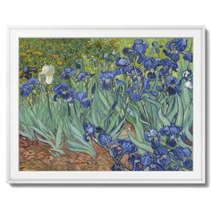 """""""Irises"""" Vincent van Gogh painting - High quality reprint of original Vincent van Gogh painting """"Irises"""". This is one of the most popular paintings by Dutch painter Irises and in created in around 1889. Vincent van Gogh started painting the series of Irises paintings within a week of entering the asylum in May 1889, working from nature in the hospital garden. There is a lack of the high tension which is seen in his later works. He called painting """"the lightning conductor for my illness""""…"""