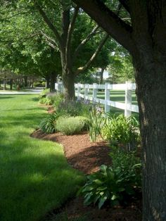 80+ Beautiful Front Yard Landscaping Inspiration on A Budget