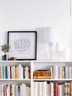 Ett eget hemmabibliotek blir favoritplatsen i höst. BILLY bokhylla ...