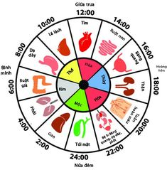 According to Traditional Chinese Medicine, chronic sleep disorders are usually caused by a Yin-Yang imbalance resulting from disruption to the flow of energy in your body. This energy is called Qi … Feng Shui, Fun To Be One, How To Find Out, Emotional Meaning, Stages Of Sleep, Mudras, Thyroid Problems, Health Problems, Traditional Chinese Medicine