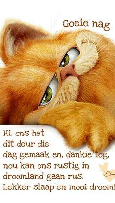 I love this picture. Garfield Cartoon, Garfield And Odie, Garfield Comics, Garfield Wallpaper, Garfield Pictures, Cartoon Caracters, Disney Phone Wallpaper, Photo Chat, Cute Cartoon Wallpapers