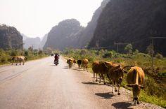 A road near Tha Khaek, Laos