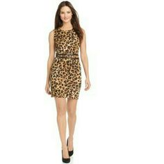 Calvin Klein Knit Leopard Dress Calvin Klein's petite sheath easily and stylishly carries you from day to night. The silhoutte is office-appropriate while the animal print fires things up for the evening! Condition: Excellent, lightly worn. Dress doesn't come with belt as seen in modeled picture. Shell: 100% acrylic, Made in China. NO TRADES! Calvin Klein Dresses