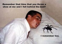 This is the reason I leave spiders alone.....