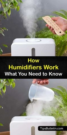 Educate yourself on how humidifiers work and the types of humidifiers available. Purchasing a cool mist humidifier or hooking one up to an air conditioner is a safe way to stop the build-up of… More Steam Humidifier, Warm Mist Humidifier, Portable Humidifier, Cool Mist Humidifier, House Cleaning Tips, Cleaning Hacks, Bleach Water, Window Unit