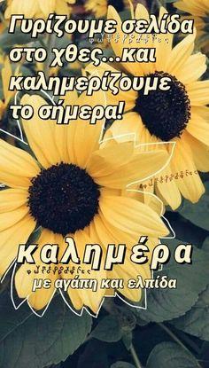 Good Night, Good Morning, Greek Quotes, Humor, Hardanger, Nighty Night, Buen Dia, Bonjour, Humour