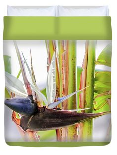 Giant Bird Of Paradise Bloom Duvet Cover by Debra Martz.  Available in king, queen, full, and twin.  Our soft microfiber duvet covers are hand sewn and include a hidden zipper for easy washing and assembly.  Your selected image is printed on the top surface with a soft white surface underneath.  All duvet covers are machine washable with cold water and a mild detergent. #Giant #BirdofParadise #Bloom