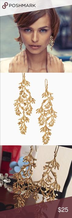 """Grace chandelier earrings These elegant earrings are hand cast from delicate leaves that Blythe found while in Northern California. The natural fern design will add the perfect touch of romance to your look - can be dressed up or down.  3"""" drop length.  Sterling silver ear wire.  Medium weight. Shiny gold plating. Stella & Dot Jewelry Earrings"""