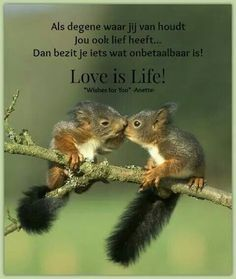 Love is Life!