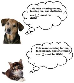DOGS VERSUS CATS: This truly sums up the difference between the two.