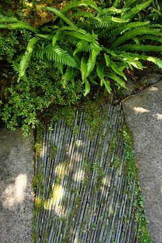 texture in slate path