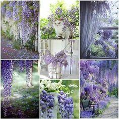 Purple Sparkle, Glass Vase, Collages, Home Decor, Collage, Decoration Home, Collagen, Interior Design, Home Interior Design