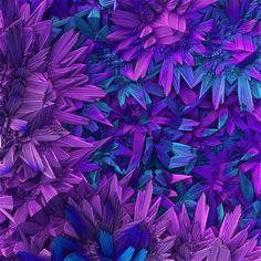 Purple Jungle ~ Lyle Hatch