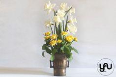 NARCISE GALBENE _ aranjament de paste cu narcise si trandafiri _ yau concept_elena toader (1)