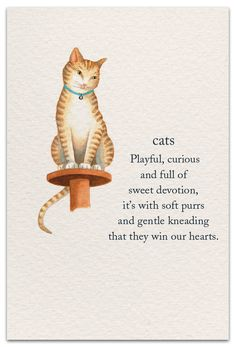 Cat on Pedestal Friendship Card Cat Quotes, Words Quotes, Life Quotes, Sayings, Crazy Cat Lady, Crazy Cats, Sweetest Devotion, Animal Symbolism, Flower Meanings