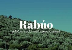 17 insultos andaluces que todos deberíamos usar Unusual Words, Weird Words, Rare Words, New Words, Cool Words, Spanish Words, English Words, Pretty Words, Beautiful Words