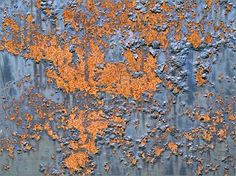 metal rust that almost resembles North and South America, or maybe that's Europe and Africa...