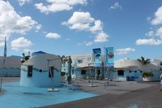 Visiting the Clearwater Marine Aquarium