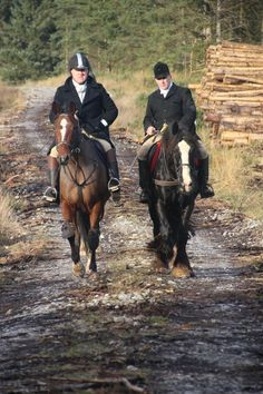Twix and Midnight  hunting with the Grallagh Harriers. Video: https://www.facebook.com/CoopersHillEquine/videos/1212025888844579/ #loveirishhorses