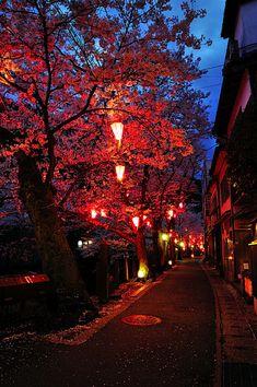 Red Autumn Night - Japan