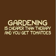 I actually started gardening to reduce my stress levels.  Victory.