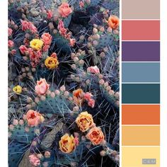 33 orange color schemes inspiring ideas for modern for Smaragdgrun wandfarbe