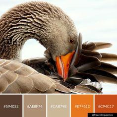 Goose | Cute |Color Palette Inspiration. | Digital Art Palette And Brand Color Palette.