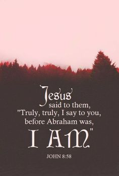 "Jesus said to them, ""Truly, truly, I say to you, before Abraham was, I AM."" ~ John 8:58"