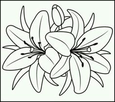 124 best FLOWERS/PLANTS/TREES▫COLORING PAGES images on Pinterest ...